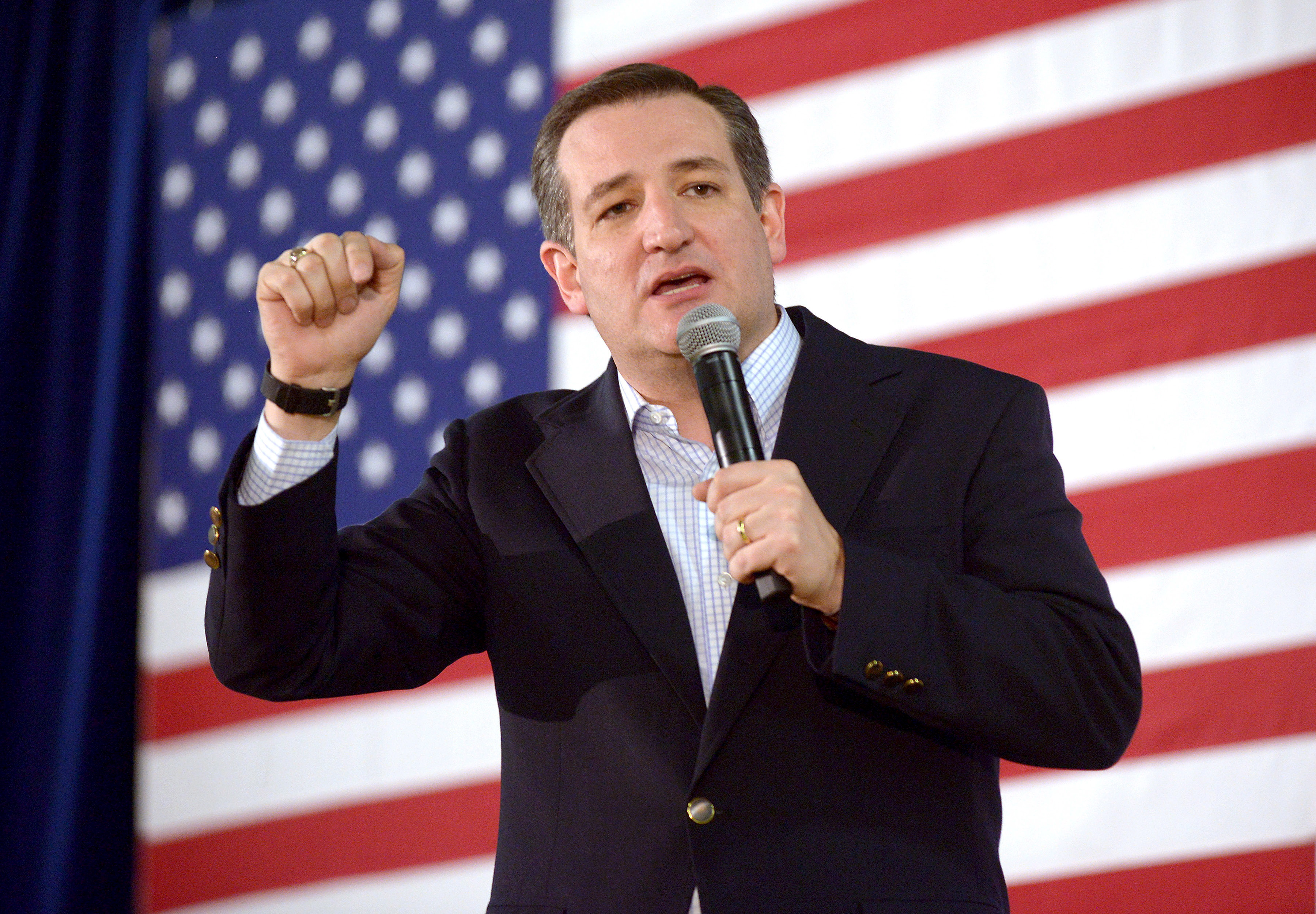 Ted Cruz Immigration Plan: I Would Go Further Than Donald ...