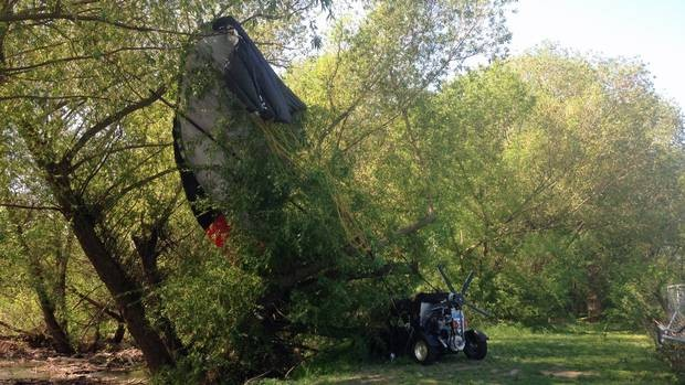 Flying car crashes into tree