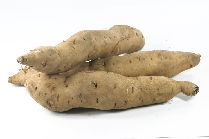 Can the sweet potato hold the cure of HIV?