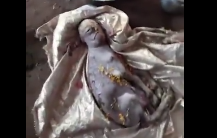 Mutant goat with human-like face born and then dies in India