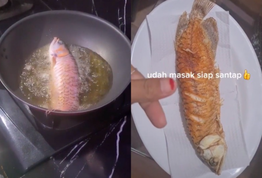 Wife fries husband's expensive pet fish