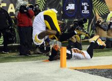 Steelers vs Bengals AFC Wild Card