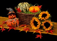 15 Best Fall Home Decorations