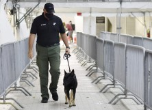 Miami Heat K-9 handler Wayne Weseman walks Happy, a COVID-19 detection dog, prior to the game between the Miami Heat and the Los Angeles Clippers at American Airlines Arena