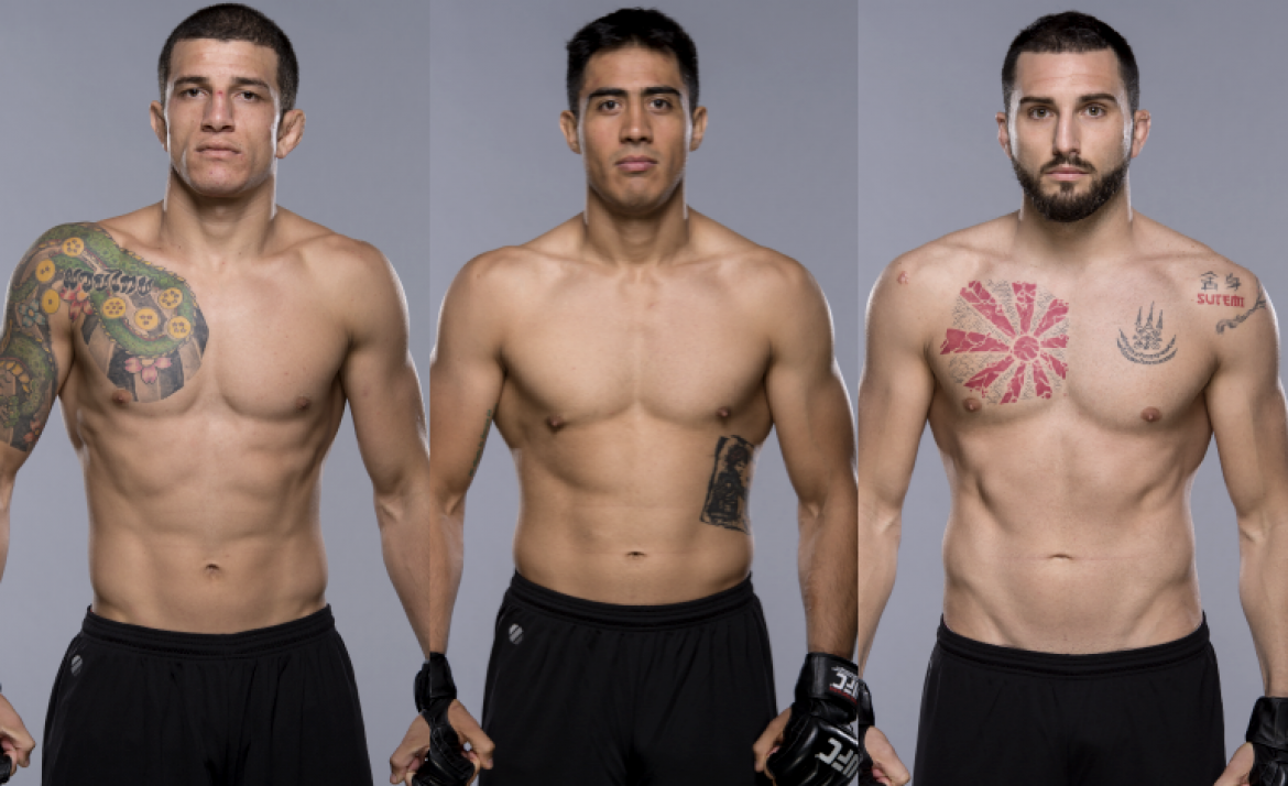 Latin Fighters 53