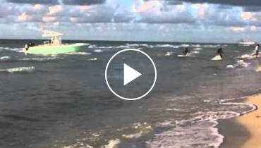 Watch The Moment When A Group Of Immigrants Arrive To The Miami Coast Swimming