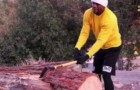 Floyd Mayweather Chops Wood